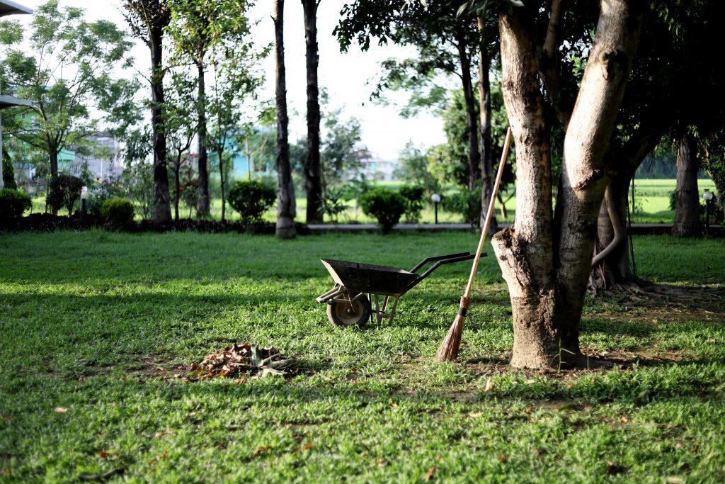 Des outils de jardinage dans un jardin à entretenir