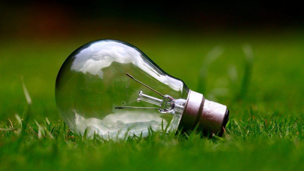ampoule posée dans l'herbe